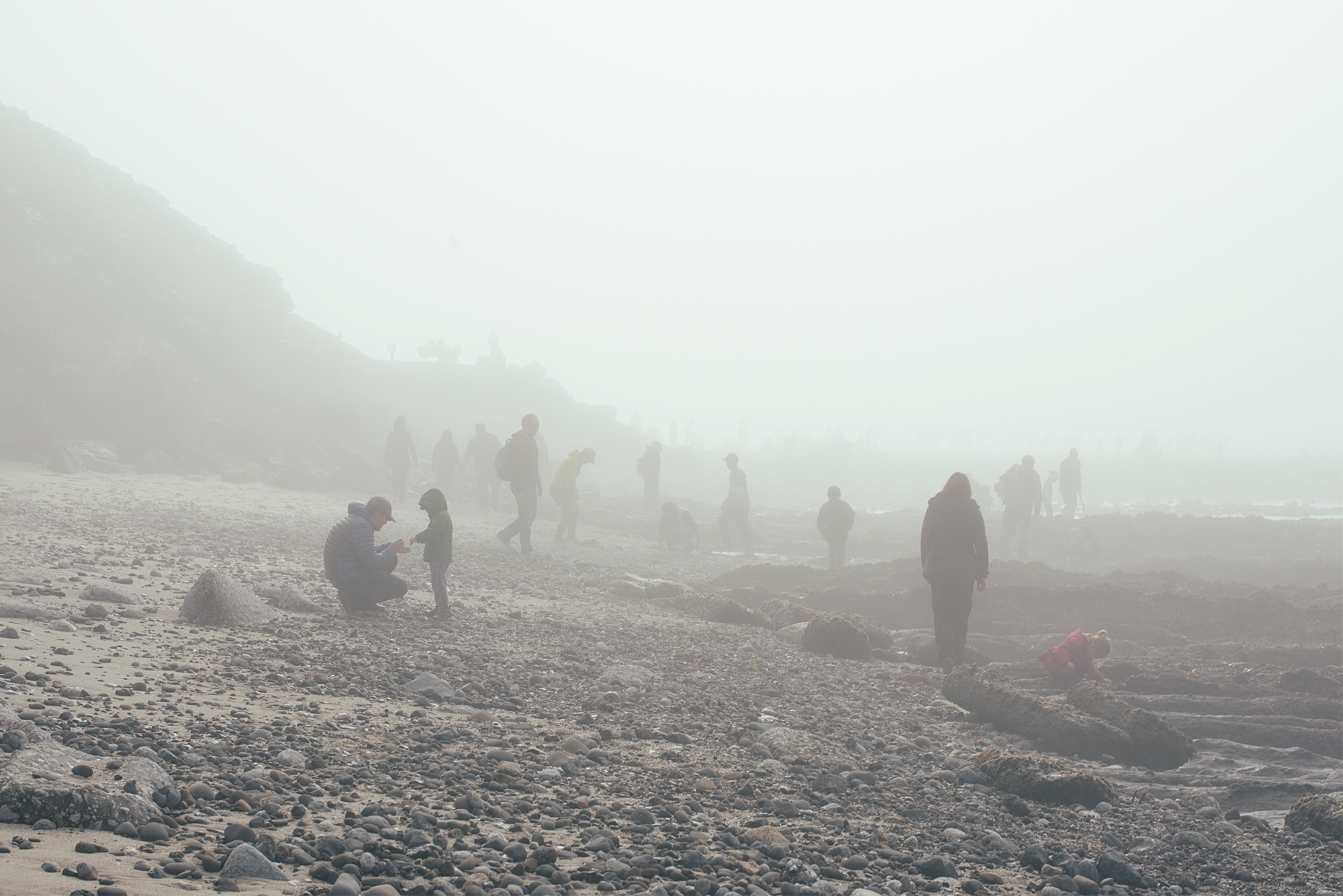 Families on beach during the day with fog.