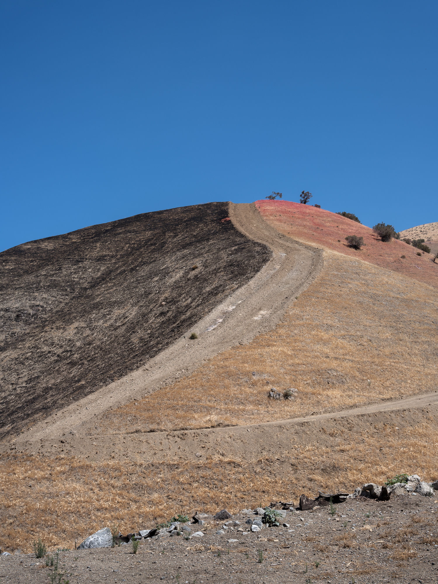 Image of a hillside that caught on fire in California.